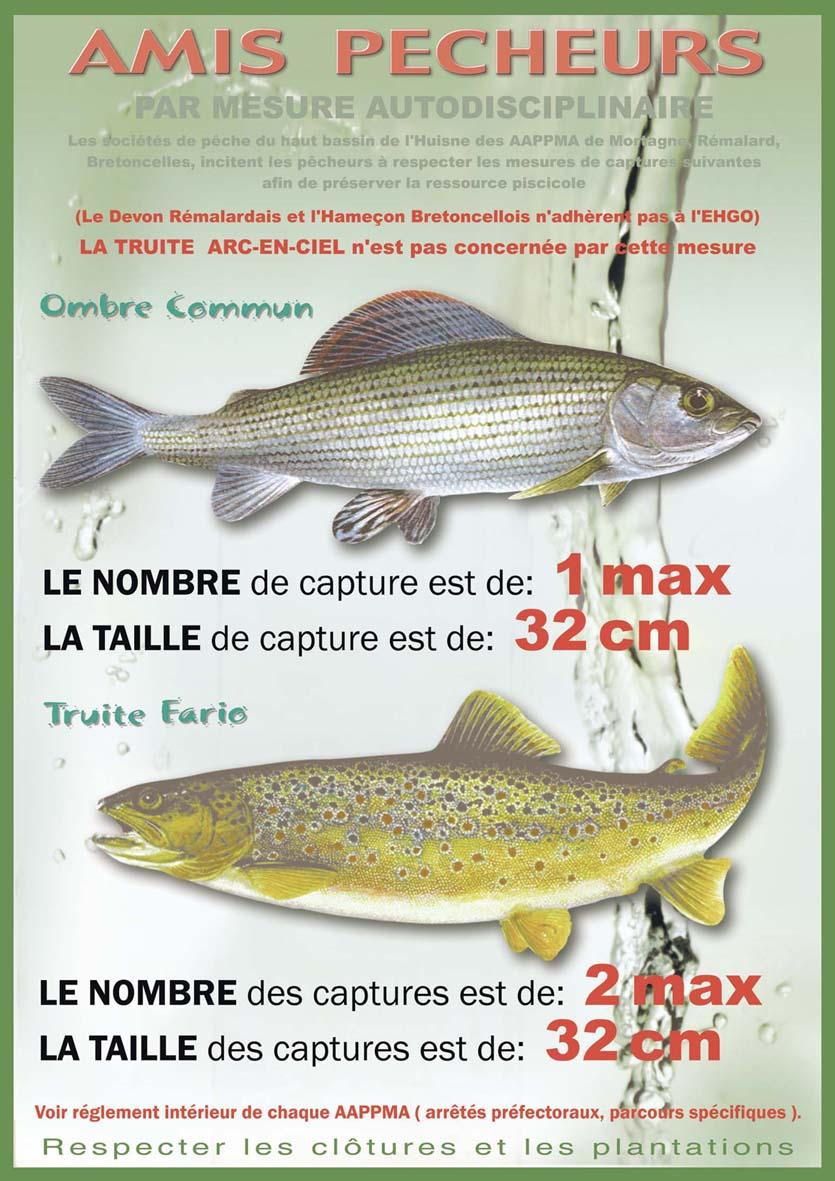 Comme étuver laliment combiné pour la pêche
